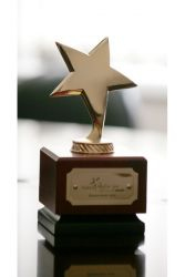 Гинделес А.Ф.: Победа в номинации «Бизнесмен года» - это оценка деятельности всего института «Псковгражданпроект»